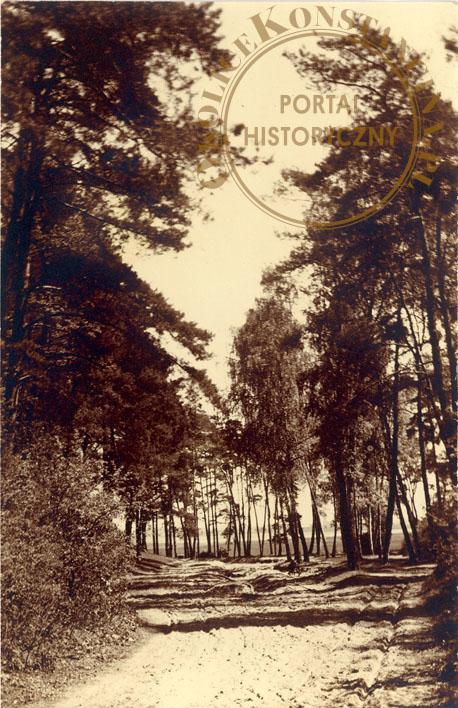 Droga na skarpie, pocztówka prywatna, 1933