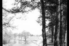 widok na Jeziorkę ze skarpy willi Zachertówka, Skolimów, fot. Poddębski (lata 20-30). Zbiory NAC