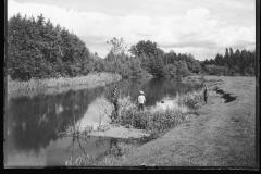 Jeziorka w okolicach Konstancina, okres międzywojnia, autor H.Poddębski. Zbiory NAC