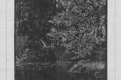 Znad Jeziorny, 1890 r., J. Owidzki