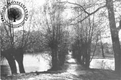 grobla między Jeziorką a stawami rybnymi w Skolimowie, lata 60-te XX wieku (zbiory A.Zyszczyka)