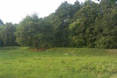 2013, grobla prowadząca do parku w Konstancinie, usypana na potrzeby kolejki wilanowskiej