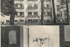 Tabita 1935 r